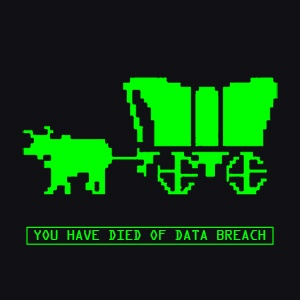 You Have Died Of Data Breach.jpg