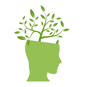 How To Nurture A Growth Mindset - Blog